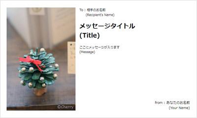 クリスマスらしい美しい写真が素敵
